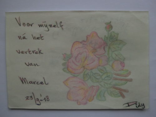 tekening bloemen Didy van de Veer